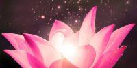 Quan điểm của Phật giáo về Tình yêu lứa đôi